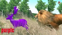 Colors Song || Learn Colors With DEER & LION || DEER V/S LION ||Explore Colors With LION & DEER