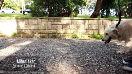 4Meslek4Stil-Alihan Aker