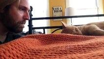 Il réveille son chat pour se venger