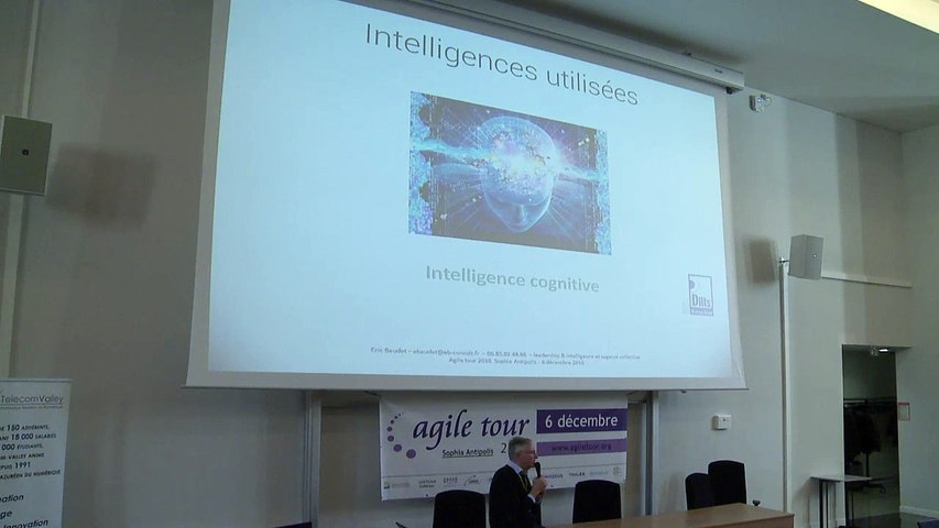Eric BAUDET - Leadership, Intelligence et sagesse collective