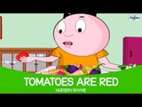 Tomatoes Are Red - Nursery Rhyme Full Song ( Fountain Kids )