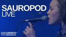 Sauropod - Live @ Trans Musicales de Rennes 2016