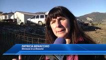 """D!CI TV : Hautes-Alpes : """"j'ai un triple filet électrique et j'arrive encore à me faire attaquer"""""""