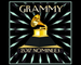Grammy nominations 2017 - selena gomez snubbed from the 2017 grammys nominations list