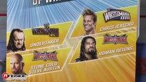"WWE FIGURE INSIDER: Roman Reigns  - WWE ""WrestleMania 33"" Series Toy Wrestling Action Figure"