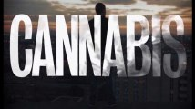 """Cannabis"" sur Arte : good trip ou bad trip ?"