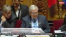 Extension du délit d'entrave à l'IVG - Les matins du Sénat (08/12/2016)