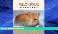 Pre Order Glorious WildLife Volume 1: A Grayscale colouring book for adults (Gray to Glorious) M J