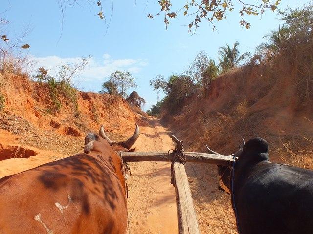 Madagascar 2016 partie 2