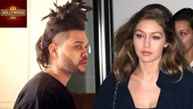 Gigi Hadid Yells at The Weeknd For Sister Bella Hadid | Hollywood Asia