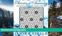 Buy Janie S  Little Serenity   Symmetry  A Coloring Book for Adults  Vol  2 (Serenity   Symmetry