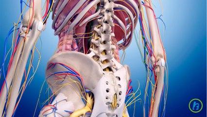 Sindromului articulatiei sacroiliace