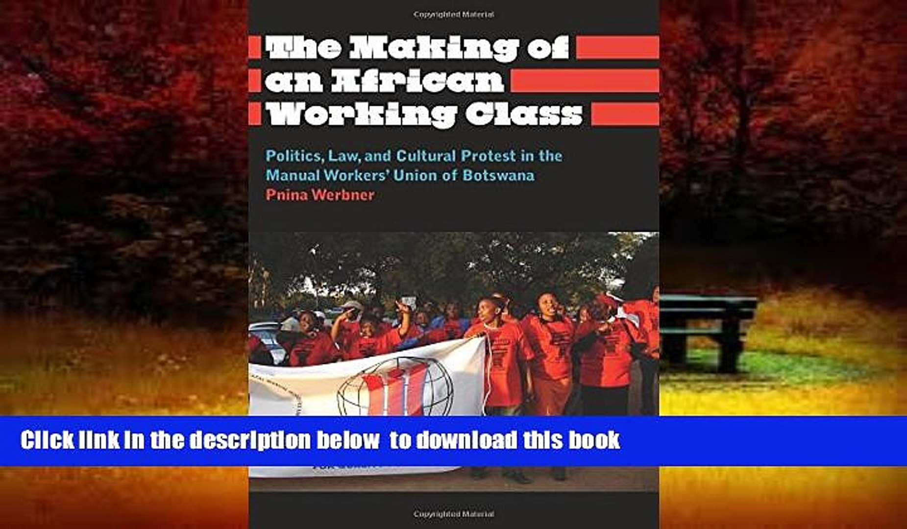 PDF [FREE] DOWNLOAD  The Making of an African Working Class: Politics, Law, and Cultural Protest