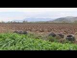 Φ. Παπαθωμά: Η αγροτική οδοποιία στην Κωπαίδα ανήκει στους Δήμους. Καμία ευθύνη για τις καθυστερήσεις στο κολυμβητήριο