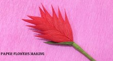 How to Make Heliconia Crepe Paper flowers - Flower Making of Crepe Paper
