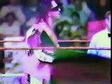 WWE - Bret Hart vs Razor Ramon Royal Rumble 1993