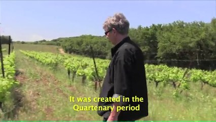 Volcanic soil on Languedoc and how it helps wine grapes to grow