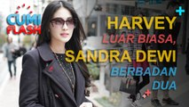 Harvey Luar Biasa, Sandra Dewi Langsung Berbadan Dua - CumiFlash 15 Desember 2016