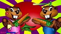 Honey Pot Toddler Learning Videos   Baby Rhymes & Songs   Preschoolers Educational Videos