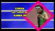 Kamba IPA - CURIGA