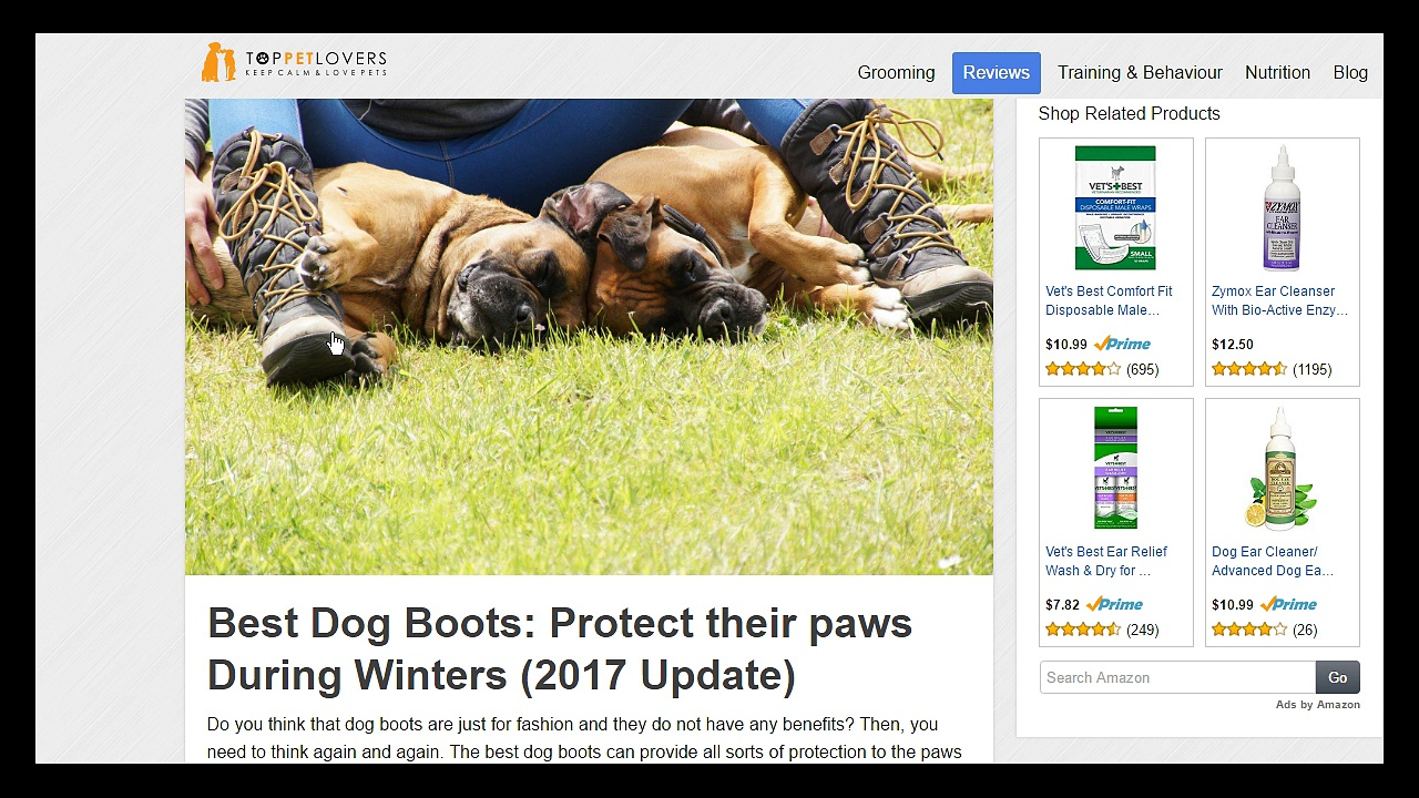 • • Best Dog Boots| Dog Boot Reviews 2017  •  •