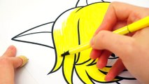 Miraculous Ladybug Cat Noir Coloring Pages For Kids Colors