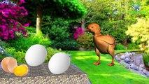 صوت الدجاج - hen sound - poule qui glousse - فيديو Dailymotion