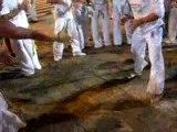 Grupo Capoeira Brasil Praia De Iracema