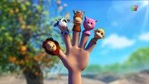 Animale dito Famiglia | Dito famiglia canzone | Popolare Filastrocca | Animal Finger Family Song