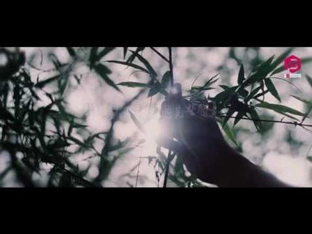 Bowen王博文- [這個夏天]  官方歌詞MV完整版 - 【Official MV】