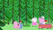 Peppa Pig en Español capitulos Completos - Varios episodios #25 - Videos de Peppa Pig la cerdita