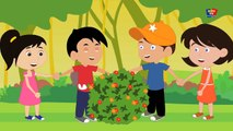 Rringa Ringa des Roses | enfants rime chansons | la musique en classe | Nursery Rhymes
