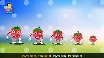 Finger Family ,  Finger Family Berry Family ,  Animated Finger Family Rhymes ,  Finger family Raspberry
