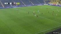 Fernandao Goal - Fenerbahce 2-0 Genclerbirligi 19.12.2016