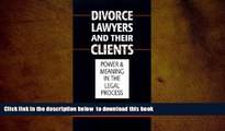 BEST PDF  Austin Sarat: Divorce Lawyers and Their Clients : Power and Meaning in the Legal Process