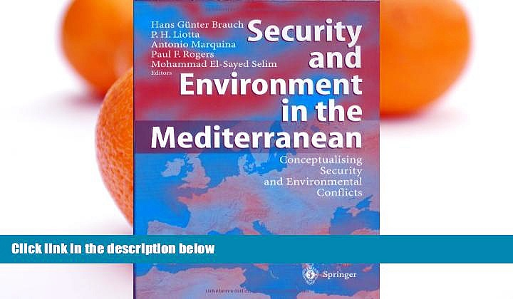 Online  Security and Environment in the Mediterranean: Conceptualising Security and Environmental