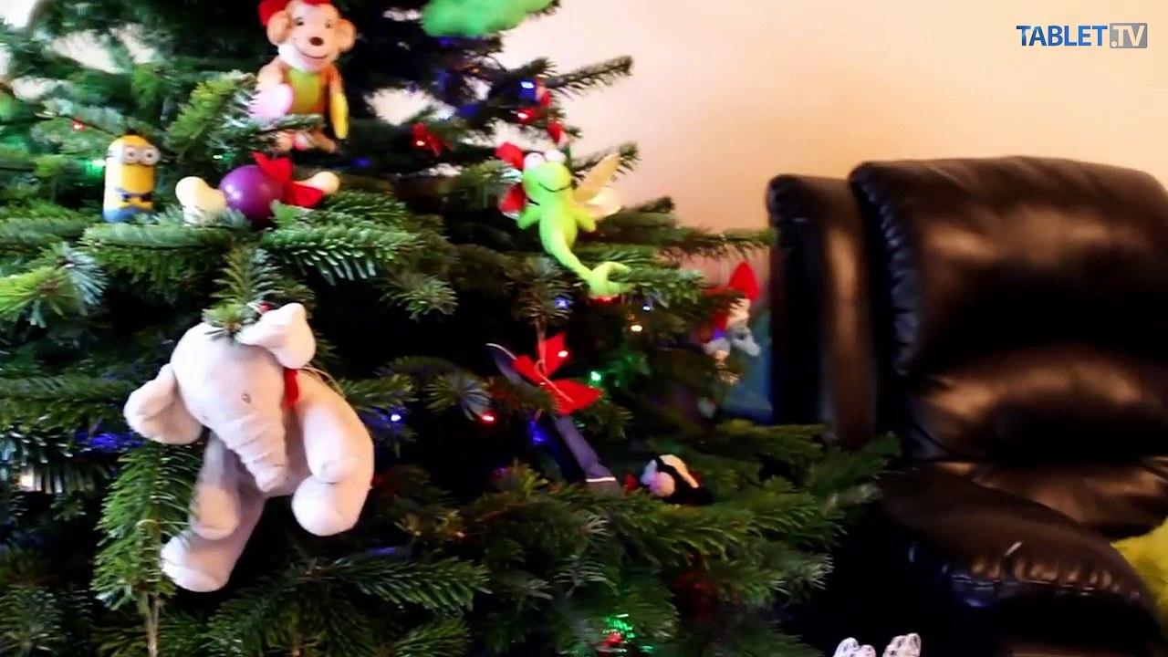 Odolal vianočný stromček vášmu psíkovi a mačke? Niekde to nebolo ľahké