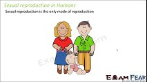 Biology Reproduction in Animals Part 6 (Puberty in males & Females) Class 8 VIII