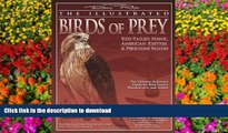 Epub Illustrated Birds of Prey: Red-Tailed Hawk, American Kestral,   Peregrine Falcon: The