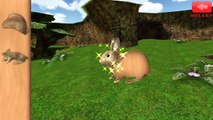 Kids Learn Farm Animals Names and Sounds   Educational Animated Animals Puzzles Games For Children