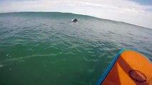 Un phoque s'incruste sur la planche d'un surfeur !