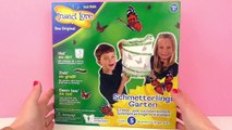 Jardin de papillons | Elever de véritables papillons et les laisser voler | Unboxing