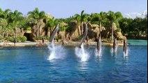 Sirenas H2O 1x04 Fiesta para chicas Audio Latino
