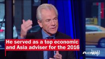 Trump's Transition: Who is Peter Navarro?