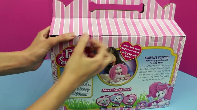 Barbie Magician Makes Puppy Surprise DisneyCarToys Stuffed Dog and Kitty Surprise Toys Magic