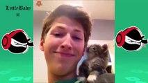Essayer de ne pas rire #64 ! -Vidéo drôles de chats - les plis drôles