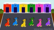 Lion King Simba Colors For Children To Learn | Simba Learning Colours for Kids