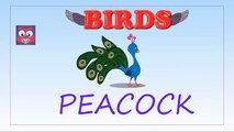 Learn Birds Names for Children in English | Birds Name and Sounds for Kids | Farm & Wild Birds Names