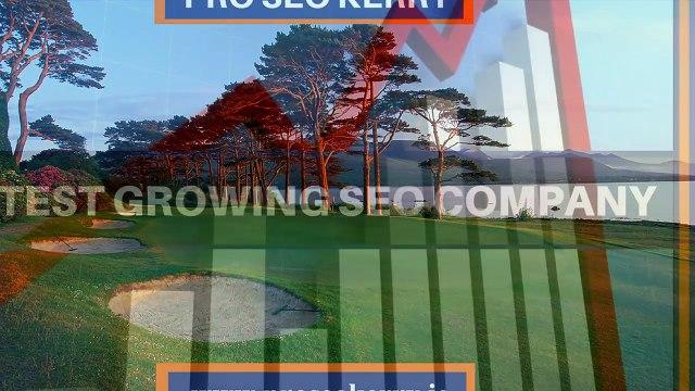 Proseo Kerry - Best SEO Services Company, Kerry, Cork
