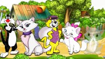 Cat Finger Family | Rhymes For Kids | Nursery Rhymes | Mother Poems | Childrens Rhymes